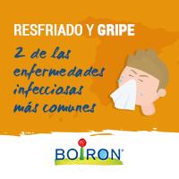 El resfriado y la gripe son dos de las enfermedades infecciosas más comunes en los hogares españoles