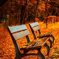Resfriados y gripes, las patologías del otoño